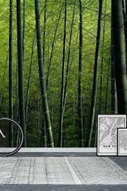90 best forest wall murals images on pinterest wallpaper designs bamboo wall mural wallpaper