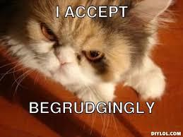 Meme Generator Cat - angry cat meme generator 28 images angry cat imgflip mad cat