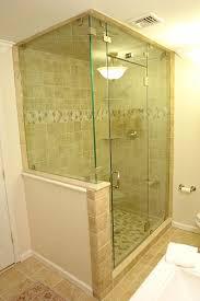 Frameless Steam Shower Doors Showers