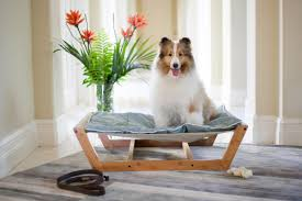 pet lounge studios bambu nautical pet hammock u0026 reviews wayfair