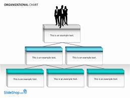 organizational chart examples chart templates