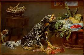 cuisine lille file lille pdba vos chien cuisine jpg wikimedia commons