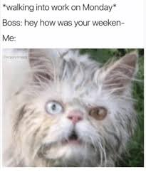 Monday Work Meme - walking into work on monday boss hey how was your weeken me the