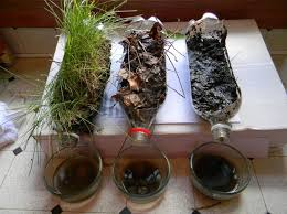agriculture projects for students 16 best science grades 9 12 images on pinterest agriculture