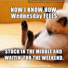 Funny Memes About Wednesday - wednesday funny meme 100 images wednesday meme funny it s