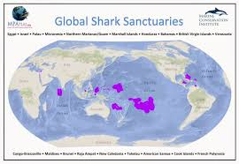 French Polynesia Map Shark Defenders Shark Conservation Laws