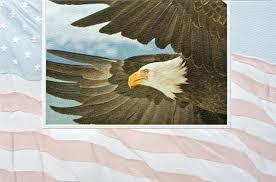 pumpernickel greeting cards pumpernickel press greeting card patriotic eagle andy thornal