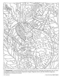51 chameleons creative coloring images