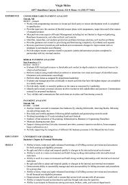 best resume format 2015 pdf icc payment analyst resume sles velvet jobs