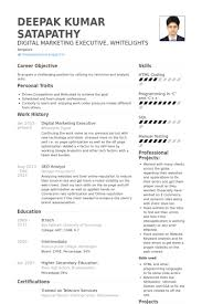 Sample Resume For Digital Marketing Manager by Resume Examples Digital Marketing Resume Ixiplay Free Resume Samples