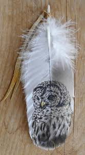 turkey feather painting barred owl painted on turkey feather painted feathers