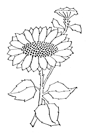flower template printable clip art library