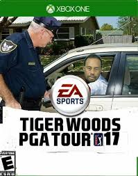 Tiger Woods Meme - tiger woods pga tour 2017 tiger woods mugshot know your meme