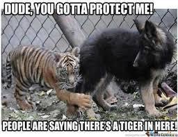 Tiger Meme - tiger by andrew12 meme center