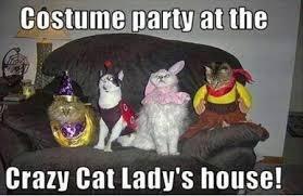 Crazy Cat Memes - costume party cat meme cat planet cat planet