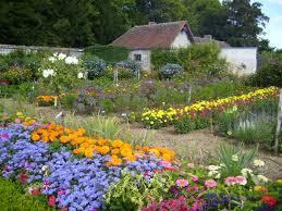 excellent inspiration ideas flower gardening stunning flower