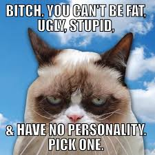 Stupid Bitch Meme - bitch you can t be fat ugly stupid and have no personality