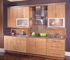 Kitchen Cabinets With Frosted Glass Doors Cool White Color Wooden Amish Kitchen Cabinets Featuring Double