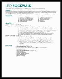 winsome ideas good resume 12 great resume format hybrid