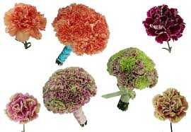 Faux Peonies New Carnations And How To Create Faux Peonies Fiftyflowers The Blog