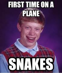 Snakes On A Plane Meme - internet meme s explained aoayda