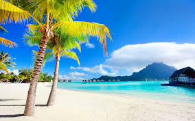 beaches bora paradise beach pier palm sun coast vacation isle
