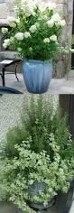 Patio Garden Designs by 5342 Best Planters Garden Pots Images On Pinterest Flowers