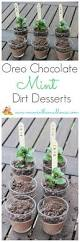 best 25 dirt recipe ideas on pinterest worms in dirt oreo dirt