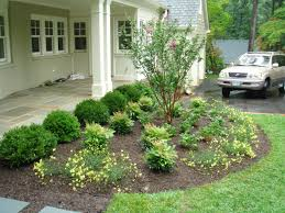 beautiful flowers and green trees near grass area for small front