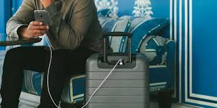 Vermont traveling suitcase images 6 travel bags and suitcases we always use for trips business insider jpg
