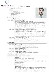 standard cv format pdf resume latex template