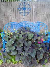 container gardening idea recycle an old wicker loveseat