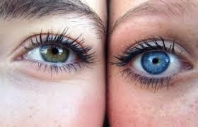 eyes sensitive to light treatment light sensitivity archives eyewear gallery
