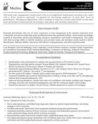 Resume Sample For Sales Executive     BNZY