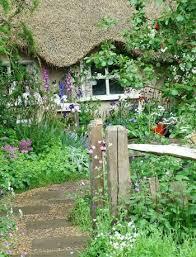 self seeding cottage garden wonder plants