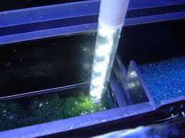best led refugium light led fuge light for bio cube reef sanctuary