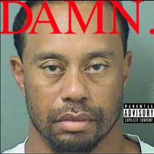 Porn Memes - tiger woods got a dui and his mugshot is already being turned into