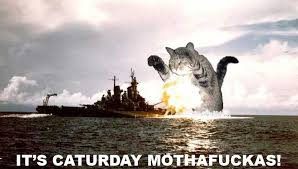 Caturday Meme - it s caturday mothafuckas cat macros