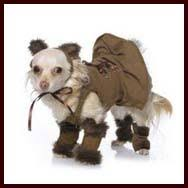 Extra Small Dog Halloween Costumes Halloween Costumes Small Dogs