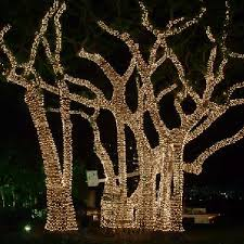 Outdoor Christmas Decorating Services by Services Tahoe Lights Holiday Lighting Install And Design