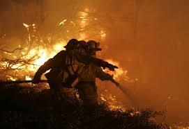 Wildfire Wedding Photos by Wildfire News San Diego Union Tribune