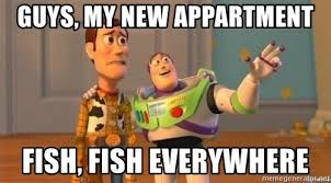 Woody And Buzz Meme - guys my new appartment fish fish everywhere woody and buzz