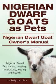 nigerian dwarf goats as pets nigerian dwarf goat owners manual
