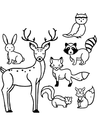 96 best coloriage d u0027animaux animal coloring page images on