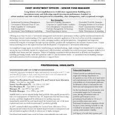 Executive Summary Resume Samples by Cover Letter How To Write An Executive Summary For A Resume How To