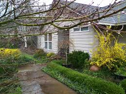 Houses For Sale In Cottage Grove Oregon by 780 Holly Ave Cottage Grove Or 97424 Us Eugene Home For Sale