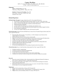 Spanish Teacher Resume Objective For Resume For Tech Support How To Write Accounting