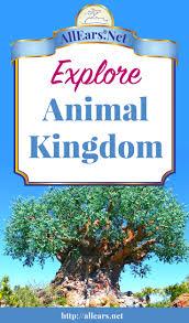 Map Of Animal Kingdom Disney U0027s Animal Kingdom Overview