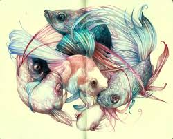 the colored pencil drawings of marco mazzoni depict the cycles of