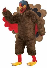 36 best thanksgiving costumes images on mascot